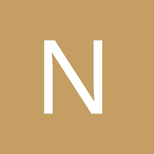 NikBunny